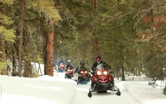 Telluride Outfitters: Cruising through the woods by the Telluride Ski Resort