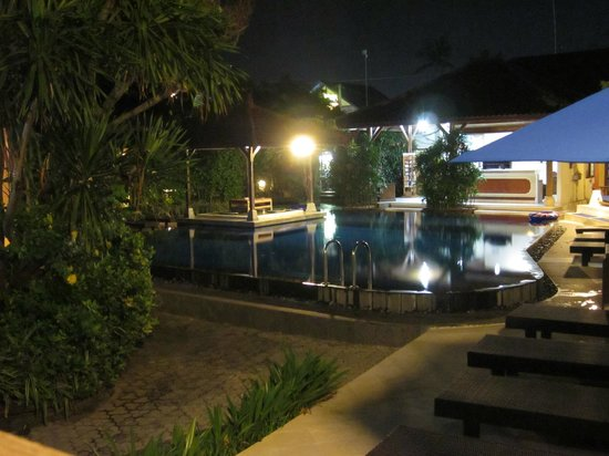 Fat Yogi Cottages : Nice lights by the pool at night
