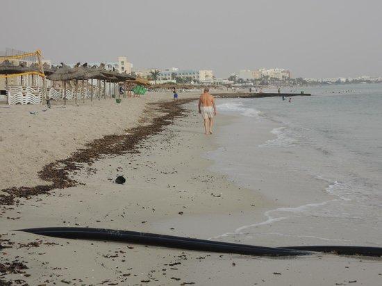 IBEROSTAR Royal El Mansour & Thalasso: bord de la plage parfois sale