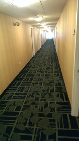 Fairfield Inn Portsmouth Seacoast: Hallway