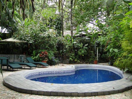 Hotel Mono Azul : Einer  der  3 Pools  im tropischen Garten.