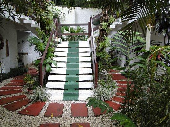 Hotel Mono Azul: Zugang  zu den  Zimmern und Gebäuden