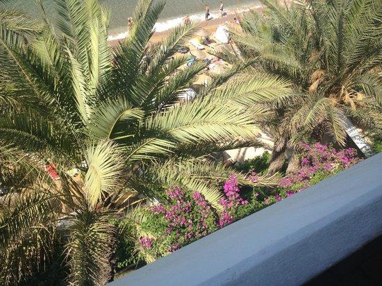 Rubi Hotel: Block A view