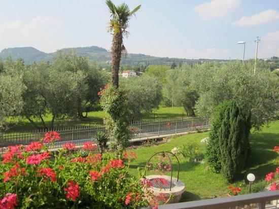 B&B Bianconiglio: panorama dal terrazzo...