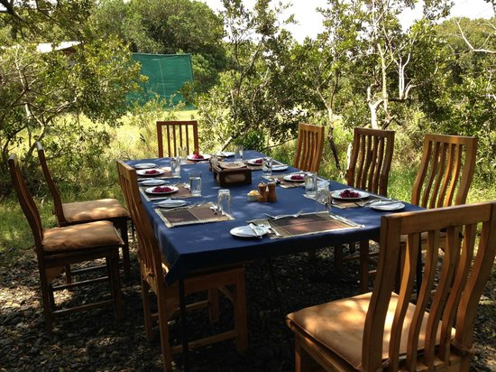 Porini Rhino Camp: out door lunch
