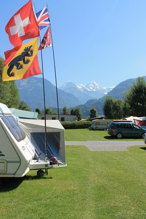 Camping Lazy Rancho : Camping met vlaggenvertoon