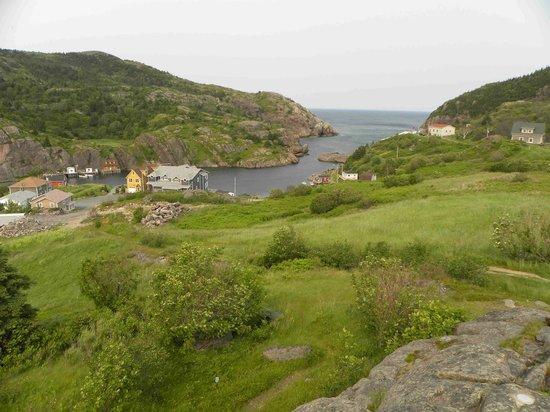 Sheraton Hotel Newfoundland: Scenery near the Quidi Vidi brewery