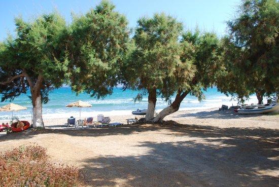 Mesogios Beach: vista dalla stanza