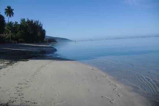 Otaha Lodge : La spiaggia
