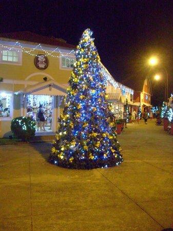 Penedo, RJ: Entrada com  árvore de Natal.
