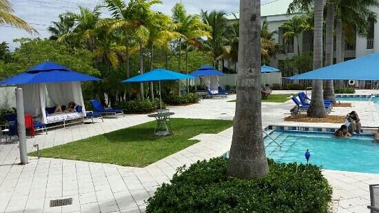 Provident Doral at The Blue Miami : Pool