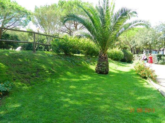 Camping Tavolara: Il giardino