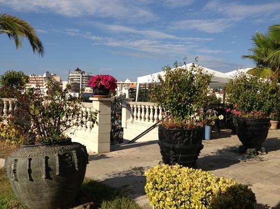 Bonsol Lloret: bushery at front of hotel