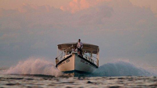 Cinnamon Dhonveli Maldives: returning from dolfin safari