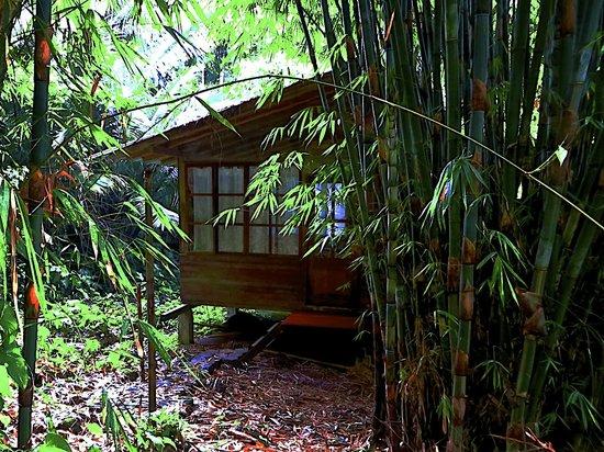 Huella Verde Rainforest Lodge: Superior Bungalow Bedroom view