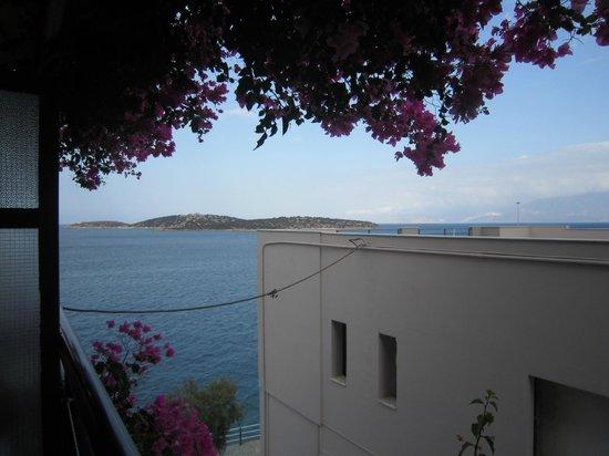 Angeliki Apartments: vue mer annoncée mais se pencher pour  la voir