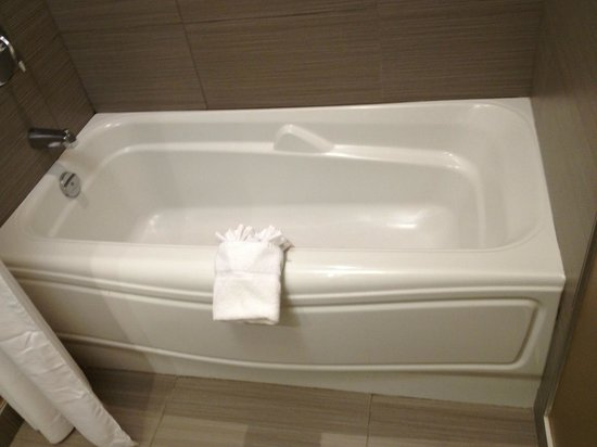 Hotel Ambassadeur Quebec : Bathtub