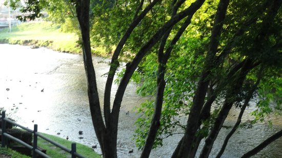 The Inn On The River: Relaxing view of The Pigeon River from our room