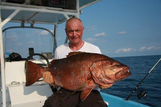 Buena Vista Sportfishing: snapper