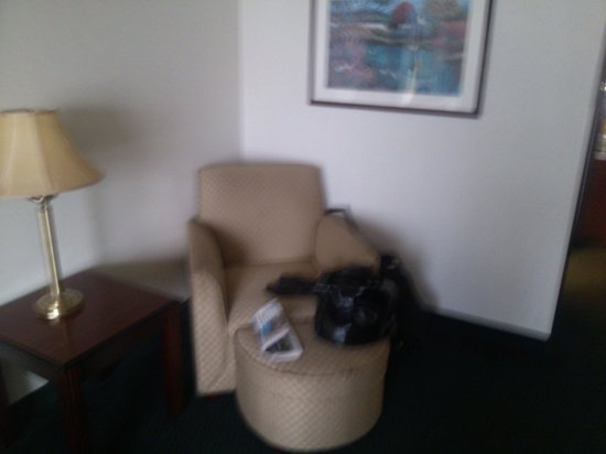 Wingate by Wyndham Atlanta/Duluth: Not very cozy chair