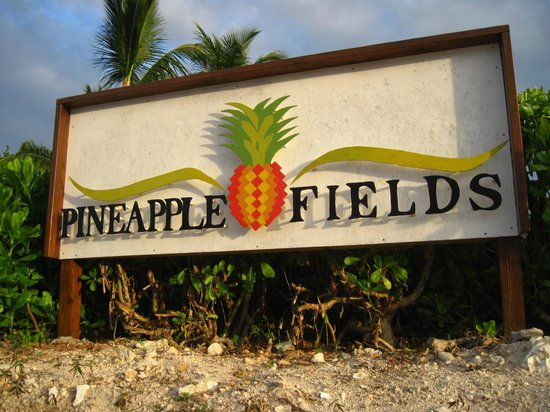 Pineapple Fields Resort: Welcome Sign
