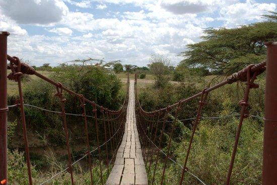 Mara Eden Safari Camp: the brige