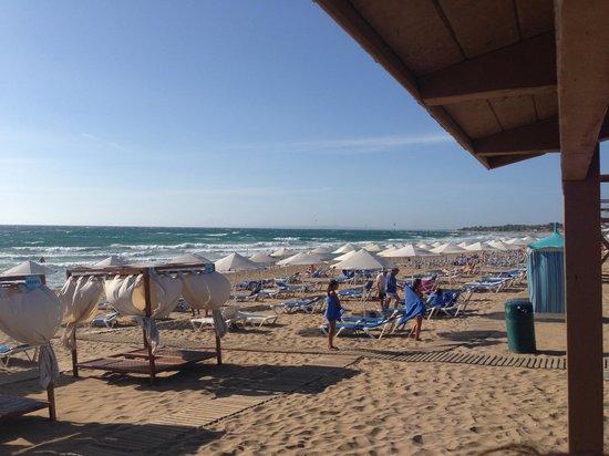 Aldemar Olympian Village: Vista spiaggia