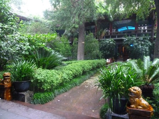 Sam's Guesthouse Chengdu Youth Hostel: the peaceful garden