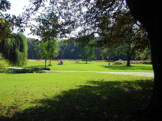 Herzogenriedpark: Ein Teil der großen Liegewiese im Park