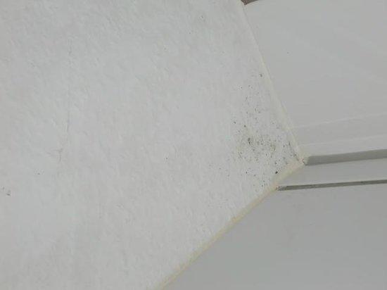 schimmel im bad bild fr n aquamaris strandresidenz rugen r gen tripadvisor. Black Bedroom Furniture Sets. Home Design Ideas