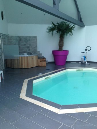 Auberge Bienvenue : jacuzzi du spa