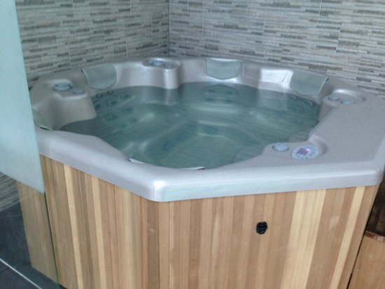 Auberge Bienvenue: Jacuzzi du spa