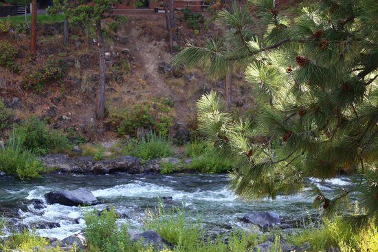 Riverhouse on the Deschutes : View From Our Balcony