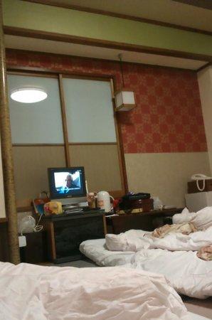 Ueno Tokyo New Izu Hotel: ROOM SIZE