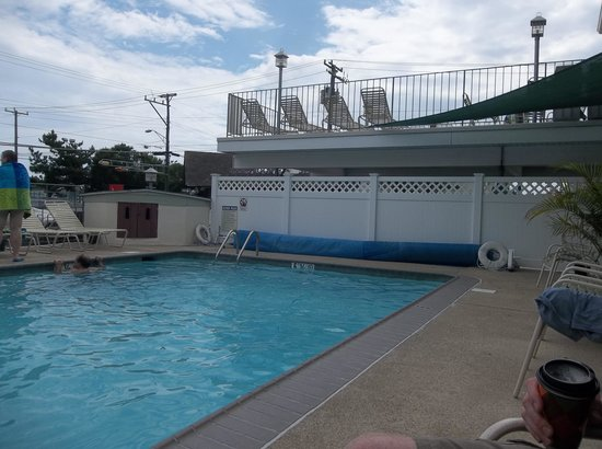 Marlane Motel: pool and sundeck