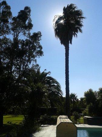 Les Jardins de Corneilla : Extérieur