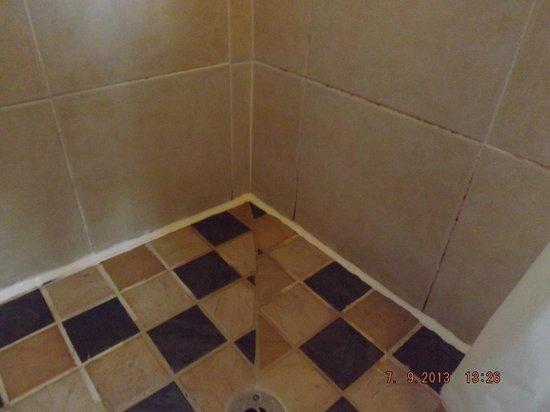 Dalgair House Hotel: shower