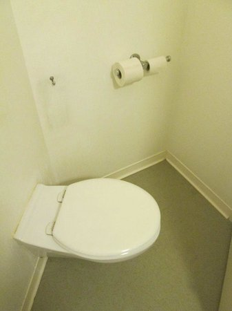 Ibis budget Paris Porte de Bercy: The toilet