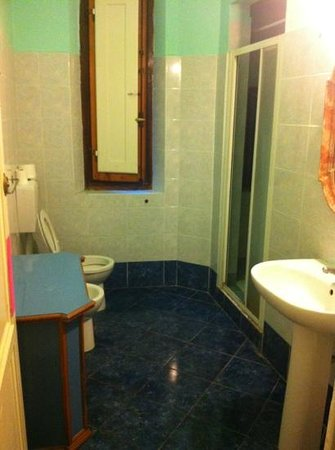 New Ostel : bathroom with shower
