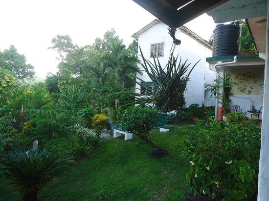 Drapers San: una veduta del giardino