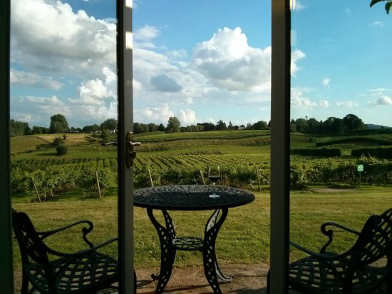 Three Choirs Vineyards : View from room towards vineyard