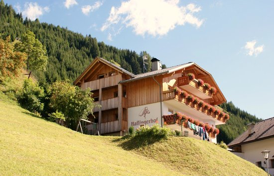 Residence Haflingerhof: residence