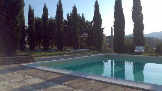 B&B Poggio Ventoso: piscina