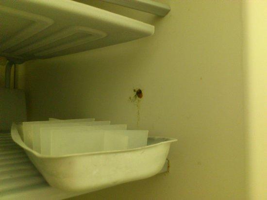 Residenza Uletsch - Laax: Kitchen 3