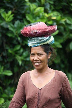 Bali Homestay: A Neighbour