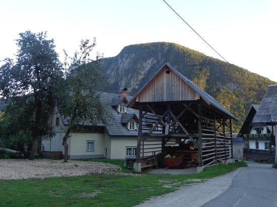 Rustic-House 13: hostels backyard
