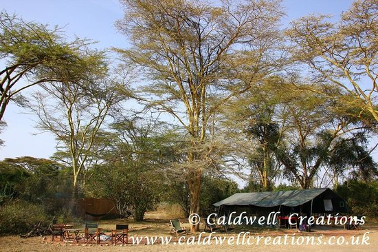 Gamewatchers Adventure Camp, Ol Kinyei: Mara Adventure Camp dining and relaxing area.