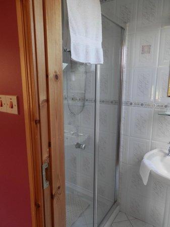 Gort Na Mona B & B: Wonderful shower!