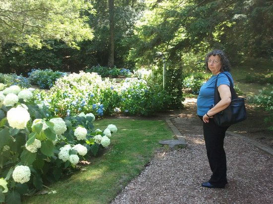 Heritage Museums & Gardens: flowers