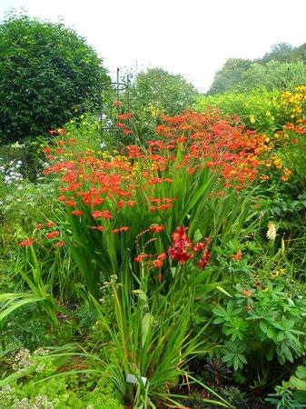 Gresgarth Hall Gardens: Rainbow of colours